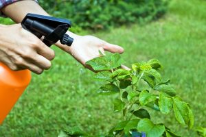 Pesticide Spray | Find the right spraying speed for your crops
